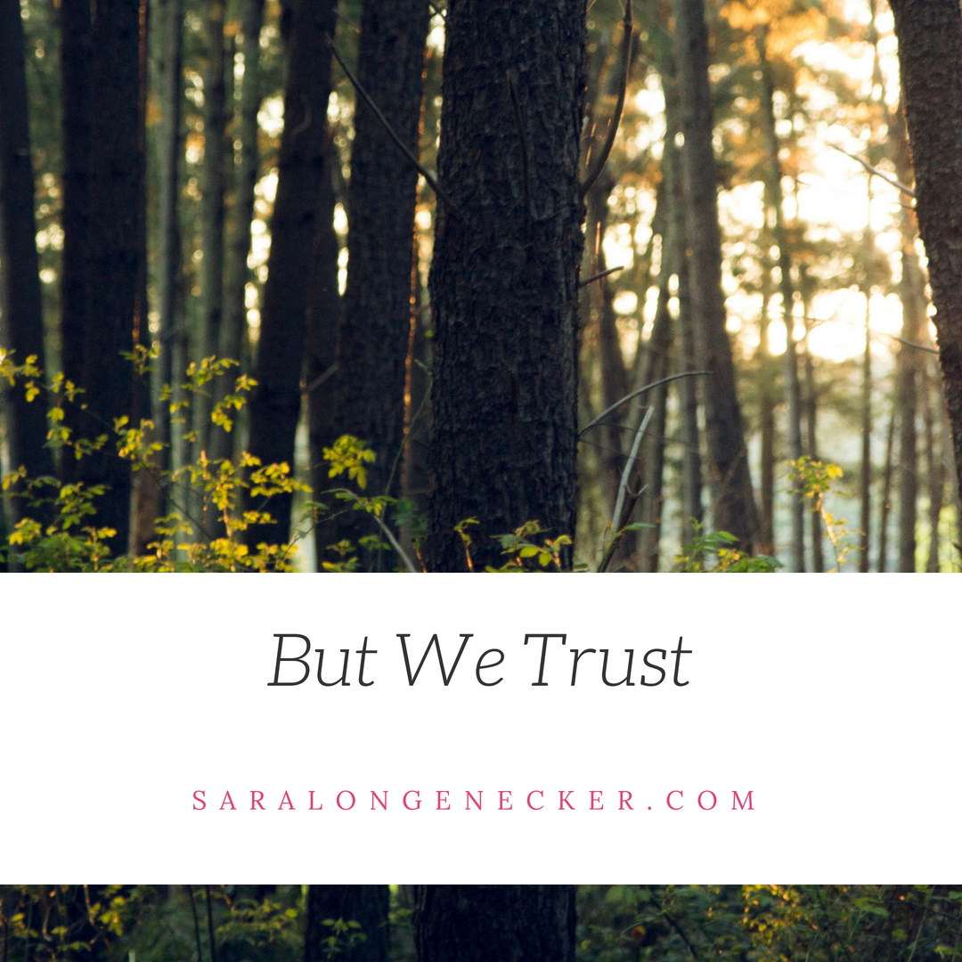 But We Trust