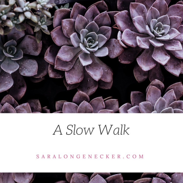 a slow walk.png