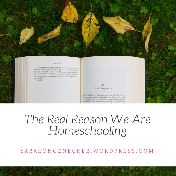 Real Reason Homeschooling