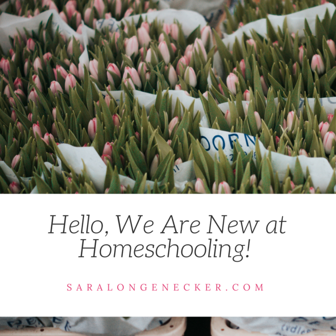Hello we are new at homeschooling