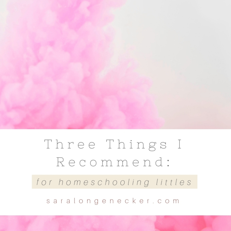 three things homeschooling littles