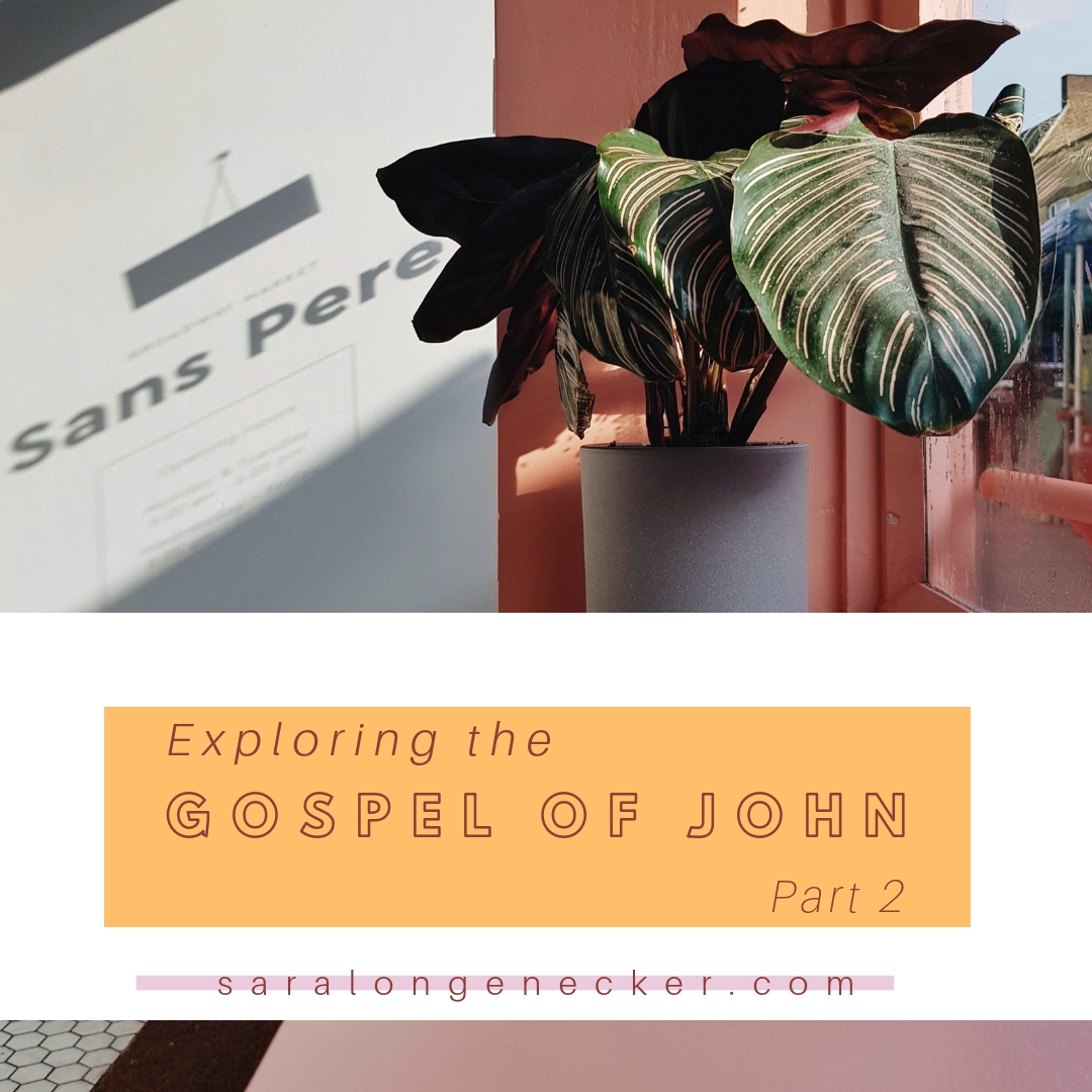 gospel of john_ part 2
