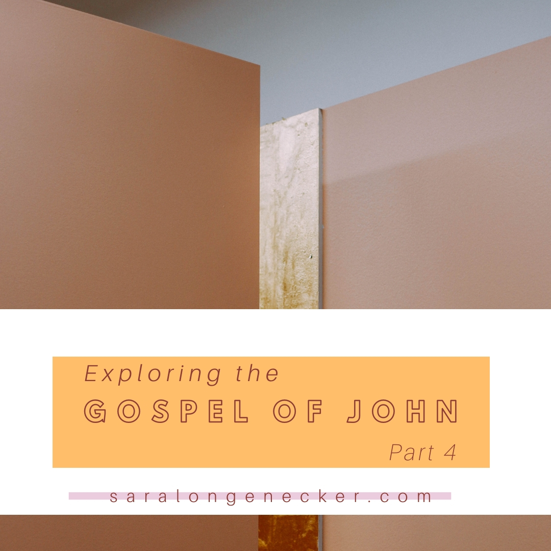 gospel of john_ part 4